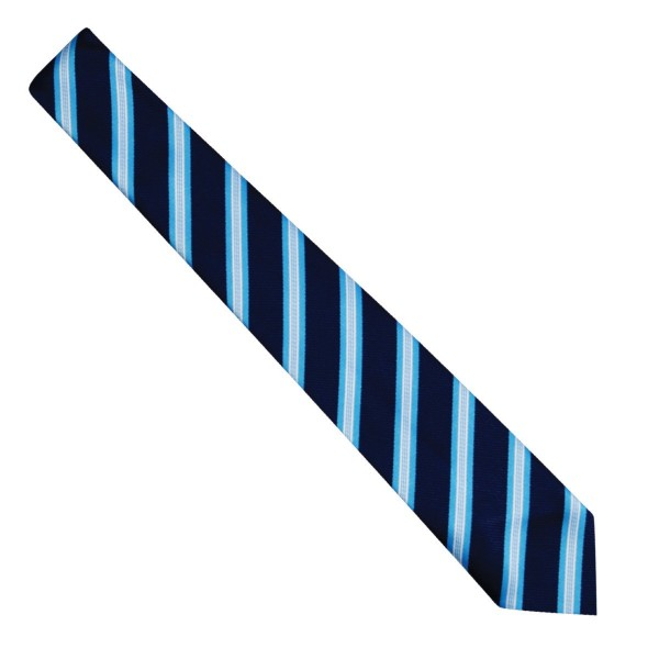 Discovery Academy Tie