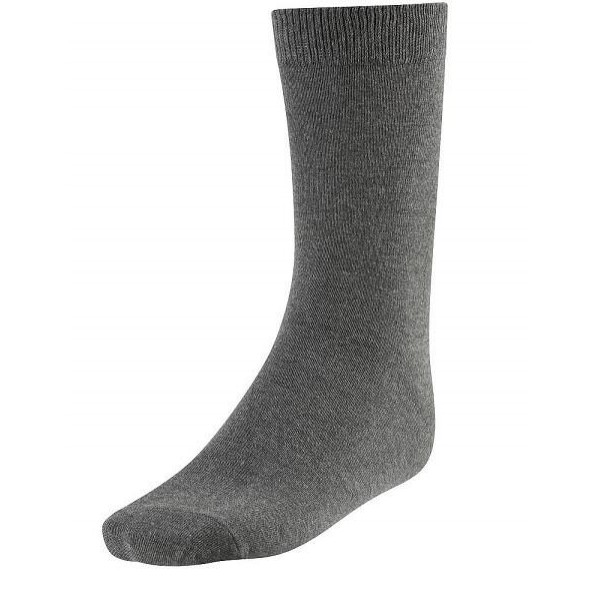 Discovery Academy Cotton Socks
